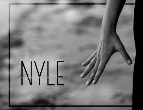 Artwork für NYLE